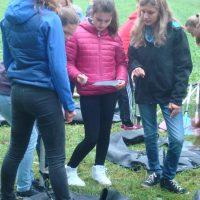 Frauen treffen frauen gablitz: Zwischenwasser singles den